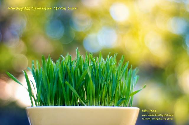 Wheatgrass Clementine Carrot Juice | Eat More Art
